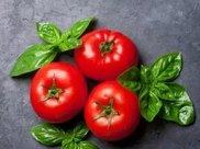 吃西红柿能减肥?想减肥可以试试这套西红柿减肥食谱!