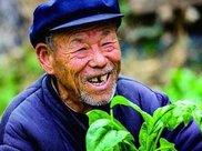 50岁后要想长寿,不是运动也不是喝水,而是坚持1件事