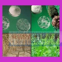 保水剂,抗旱保水剂,保水剂厂家,保水剂生产厂家,农林保水剂,农林抗旱保水剂