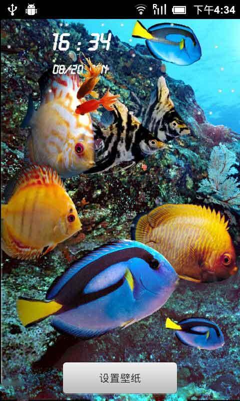 海底世界動態壁紙鎖屏(來自:)