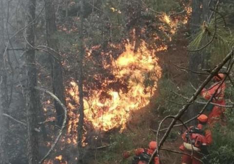 云南大理鶴慶縣發生森林火災 正在緊急撲救