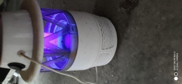 灭蚊灯紫光对人体有害吗?