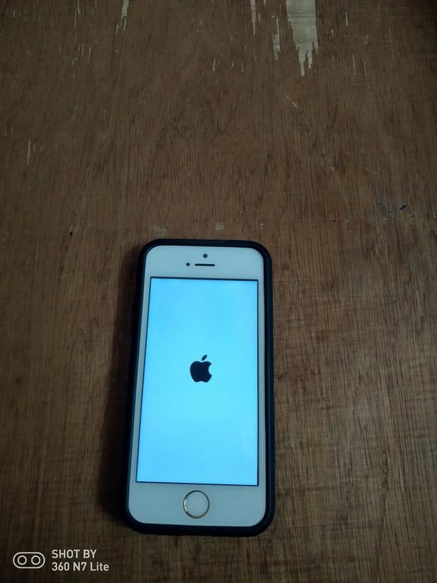 苹果5s出现白苹果咋整