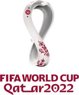 下一界世界杯足球赛何时举行?