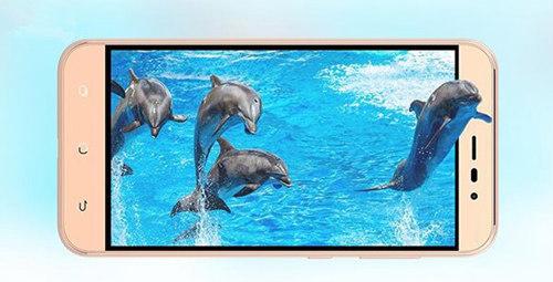 海信小海豚手机配置怎么样 海信小海豚手机配置参数介绍2