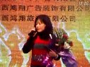 吕梁华宇广告2010年新年晚会7