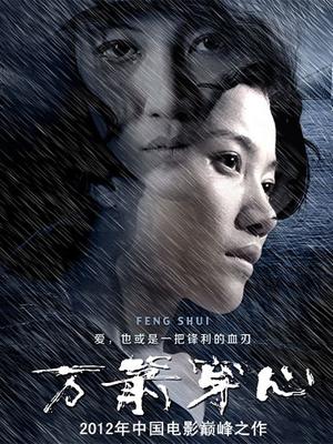 万箭穿心(2012)