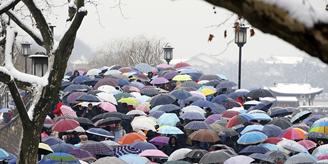 杭州断桥残雪景区游人如织 - 草根花农 - 得之淡然、失之泰然、顺其自然、争其必然