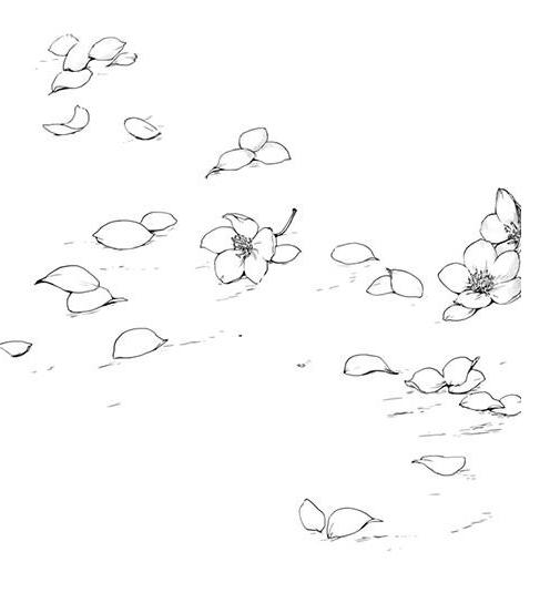花朵房子简笔画图片大全-儿童花朵花朵图片简笔画图片大全大图