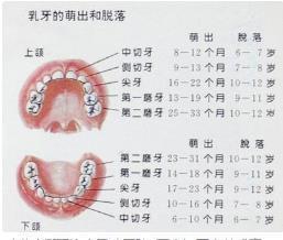 小孩的两次牙齿真的在小时候就长好了吗?