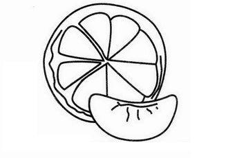 桔子花的简笔画-桔子的简笔画