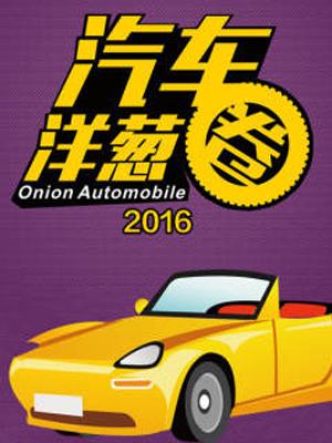 汽车洋葱圈 2016