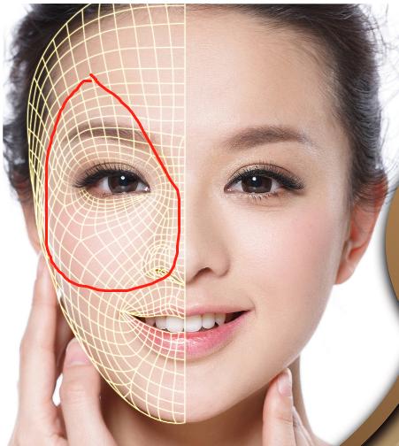 怎么在人物面部加上这种网格轮廓