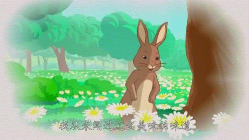 比得兔:姐姐要求比得兔赶紧坐好,她要给大家讲什么故事