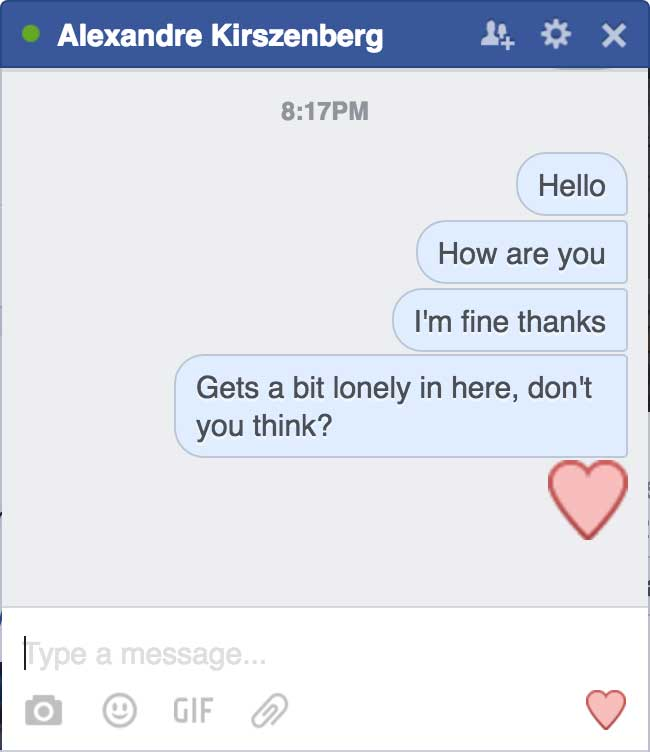 The Facebook chat box