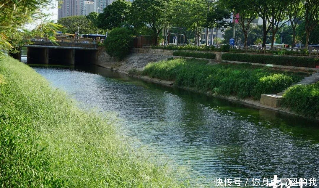 河长办污水管网
