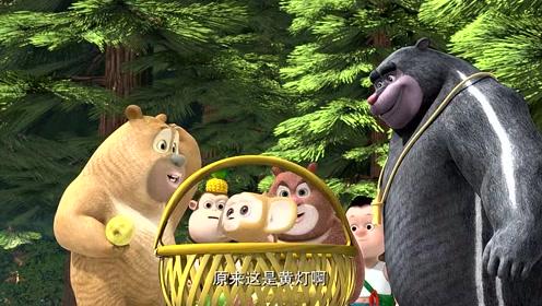 熊熊乐园2:红灯绿灯黄灯