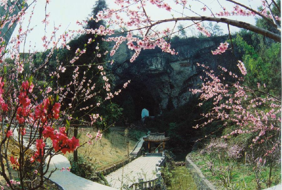 水粉黑板報風景桃花