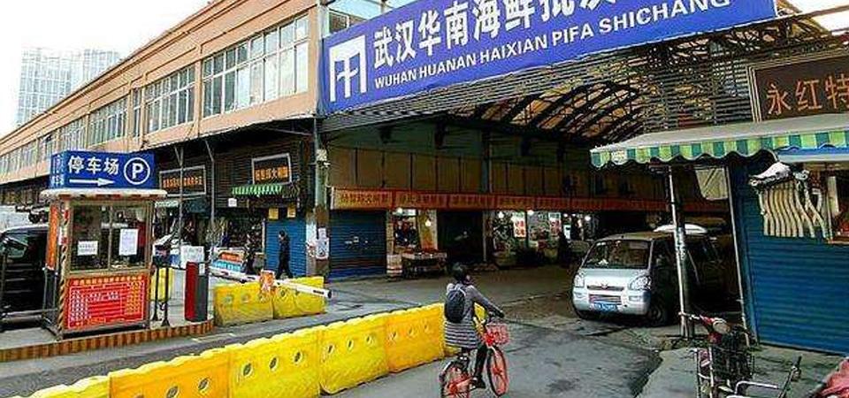 一家人住华南海鲜市场43天未感染