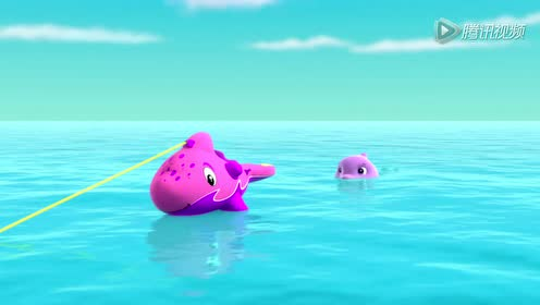 狗狗拯救小海豚