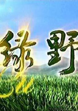 绿野-电视剧